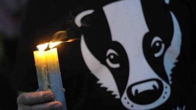 Person holding candle and wearing a badger 'not guilty' T-shirt