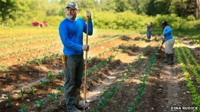 The US professionals quitting the rat race to become farmers