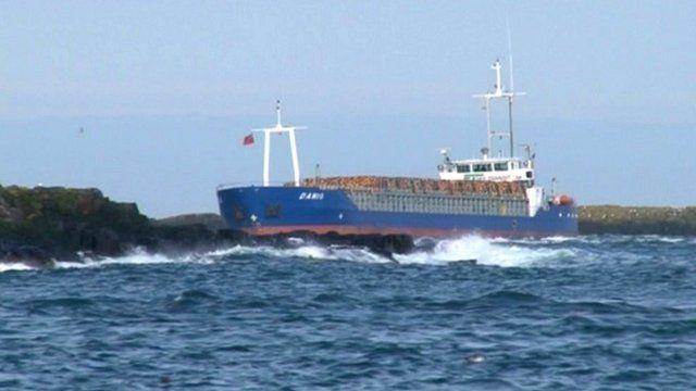 Danio cargo ship aground