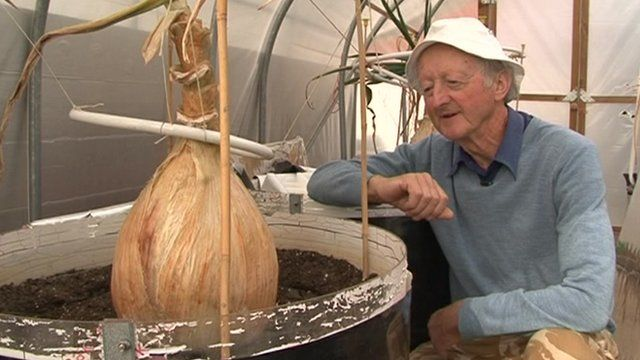Peter Glazebrook with a giant onion