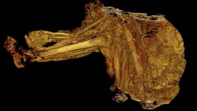 World's oldest bog body hints at violent past