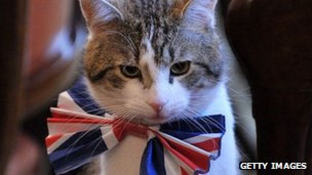 Larry the Downing Street cat not unloved, says No 10