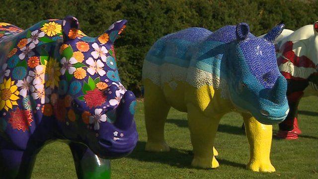Go Rhinos exhibition