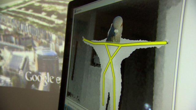 UCL's pigeon simulator