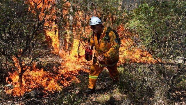 Firefighter in New South Wales