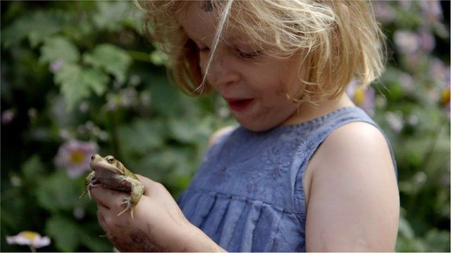 Child holds frog