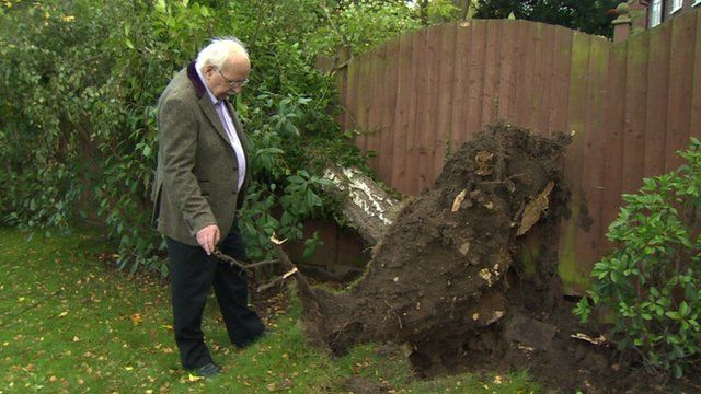 Michael Fish with tree