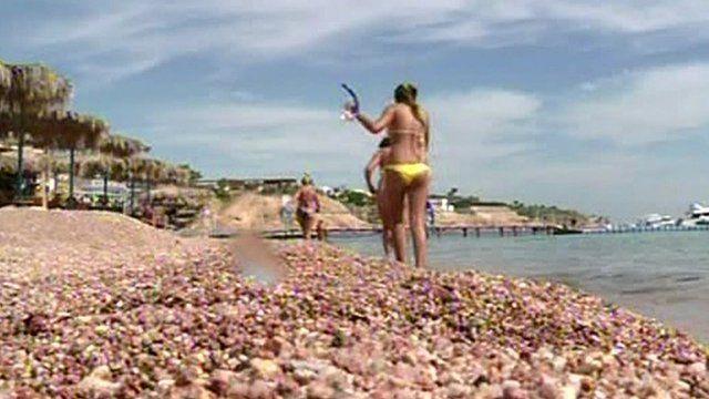 Beach in Sharm el-Sheikh