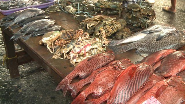 A fish market in Manila