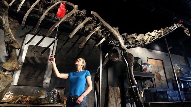 Woman dusting skeleton