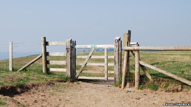 Gate at Pembrokeshire