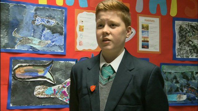 School kids give their thoughts on flares at football matches