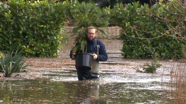 Flooding in sandwich garden