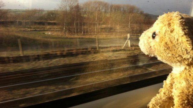 Roar the Lion looking out of a train window