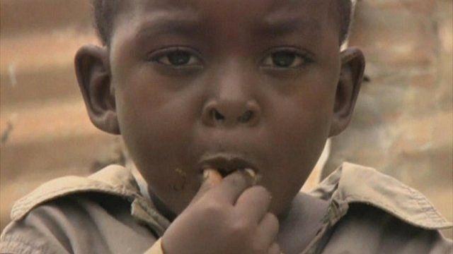 Boy eating a grasshopper