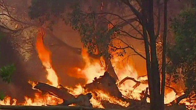Wildfires in Australia