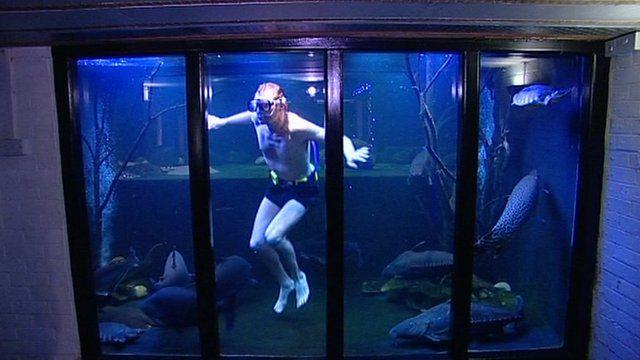 Nottingham Giant Aquarium Man To Sell Fish Bbc News