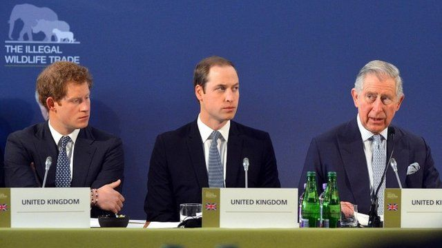 Prince Harry and Prince William listen as Prince Charles gives a speech at the Illegal Wildlife Trade Conference