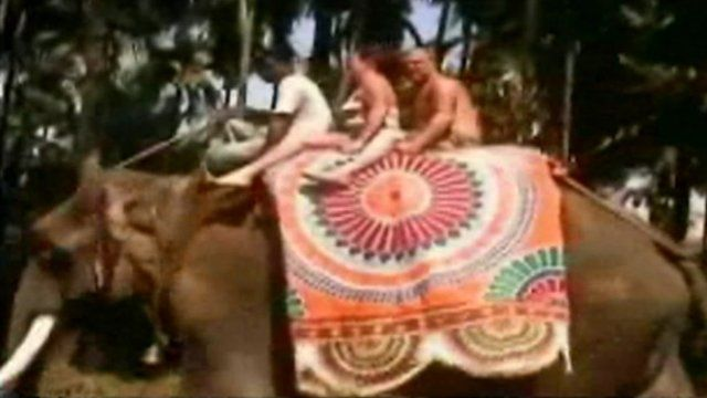Stephen Worton filmed riding an elephant