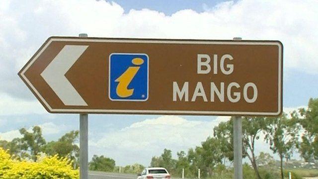 Where did the mango go?