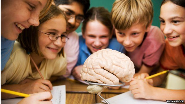 Girls' growing brains 'more resilient', study suggests