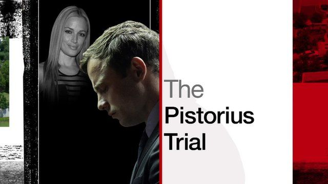 Oscar Pistorius trial day 11 - in 60 seconds