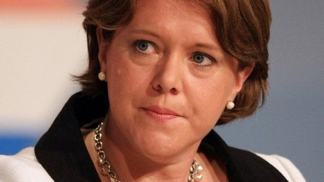 Maria Miller expenses row 'damaging credibility' of parliament