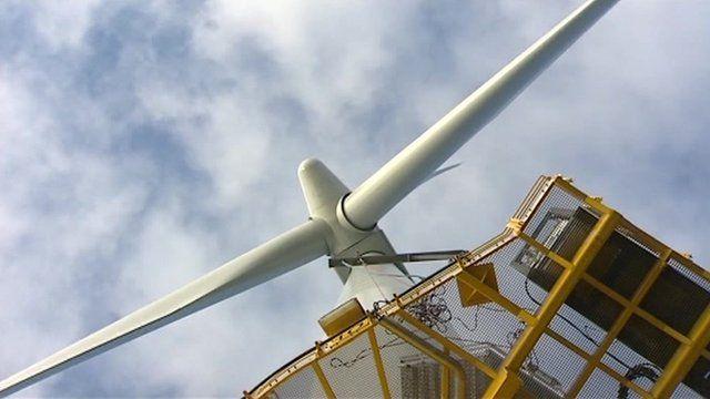 Wind farm blades
