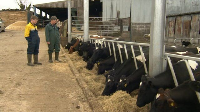 Father and son team Paul and Andrew Gould on their farm in West Stour near Shaftesbury