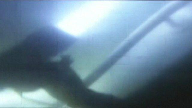 Diver's rescue attempts