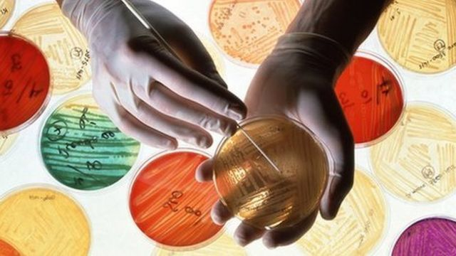 Antibiotic resistance now 'global threat', WHO warns