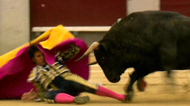 Matador and bull in ring