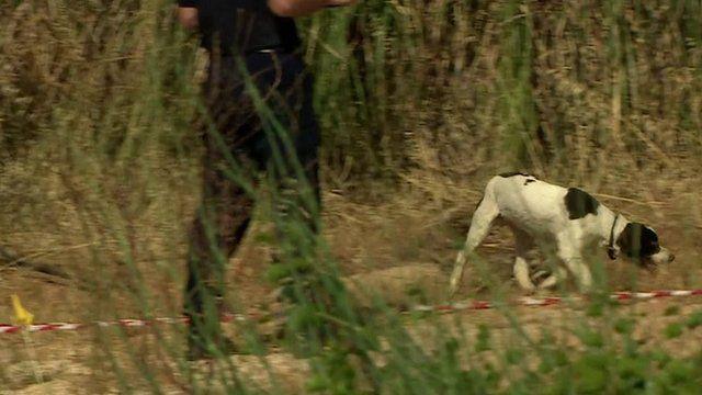 A sniffer dog moves through scrubland