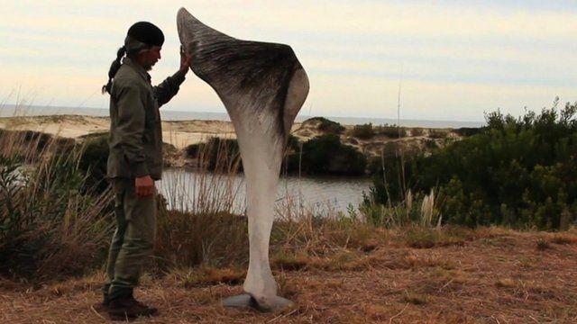 Sculptor Hamilton Coelho
