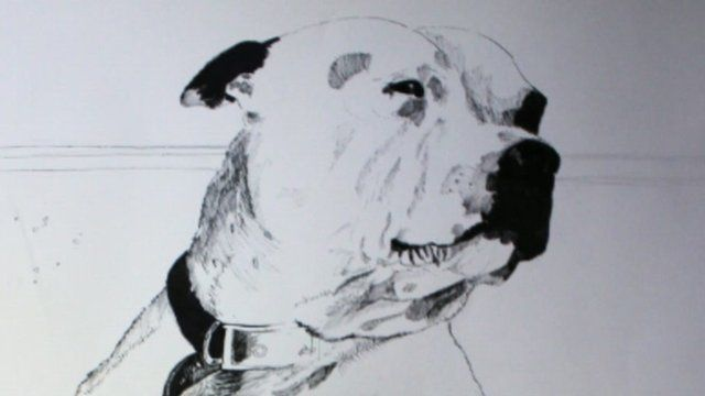 John Dolan artwork