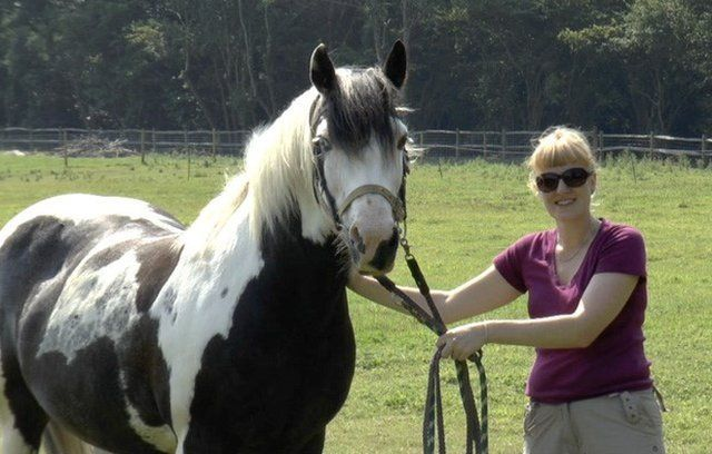 Researcher with one of the horses (c) Jennifer Wathan
