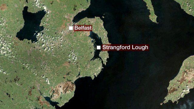 BBC graphic of Strangford Lough