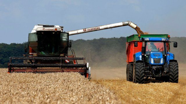 A combine harvester collecting crops