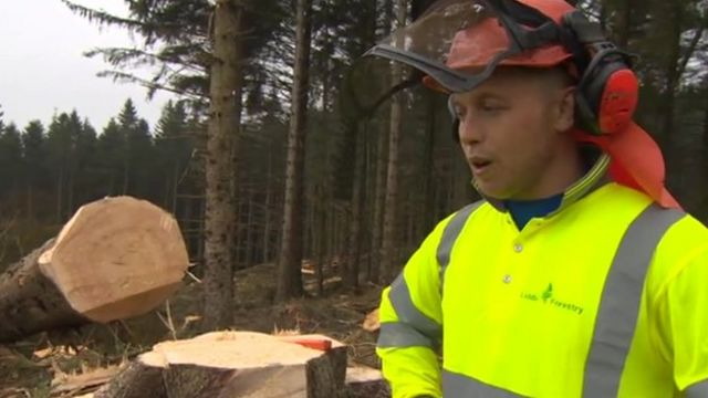 Forestry worker Stu Liddle