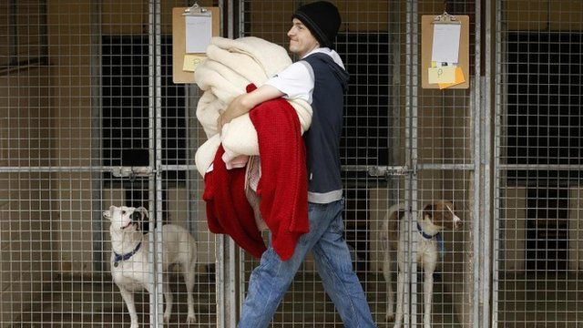 A volunteer carried donated bedding past kennels