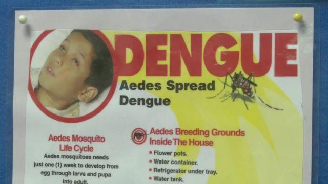 Dengue fever poster