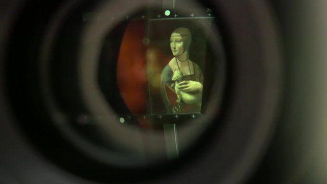 Lady with an Ermine by Leonardo da Vinci through a lens