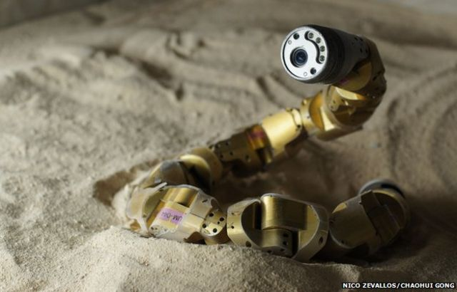Robot snake learns secrets of sidewinders