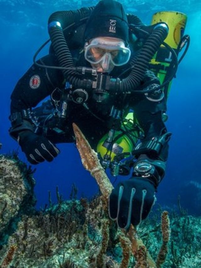Antikythera wreck yields new treasures