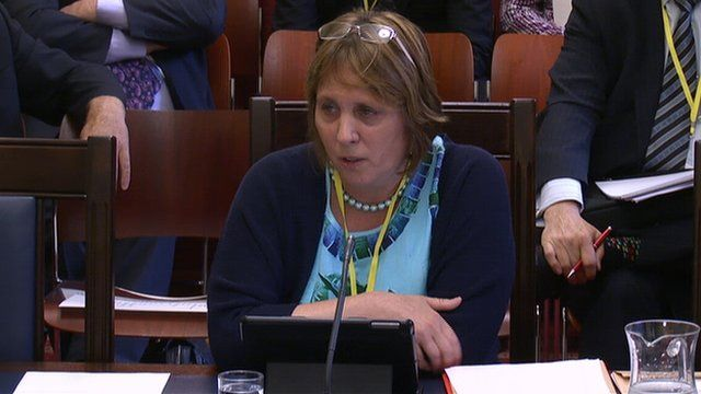 DUP councillor Jenny Palmer gave evidence to a Stormont committee on Thursday