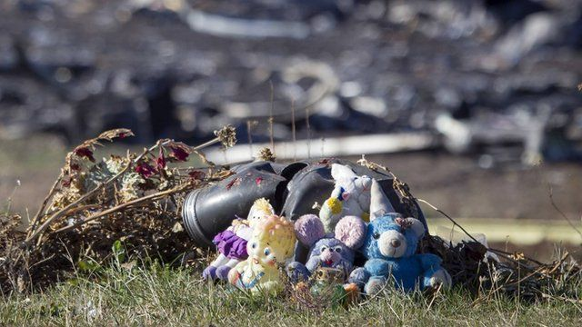 Toys are placed on front of wreckage at the site of the downed Malaysia Airlines flight MH17