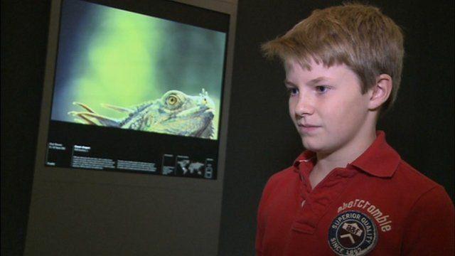 Young wildlife photographer