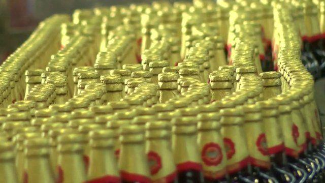 Hayward's 5000 beer bottles