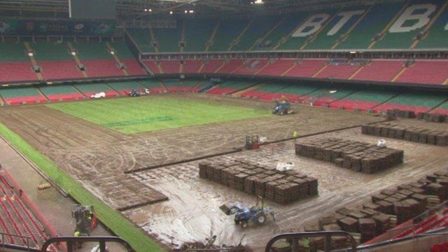 The Millennium Stadium pitch