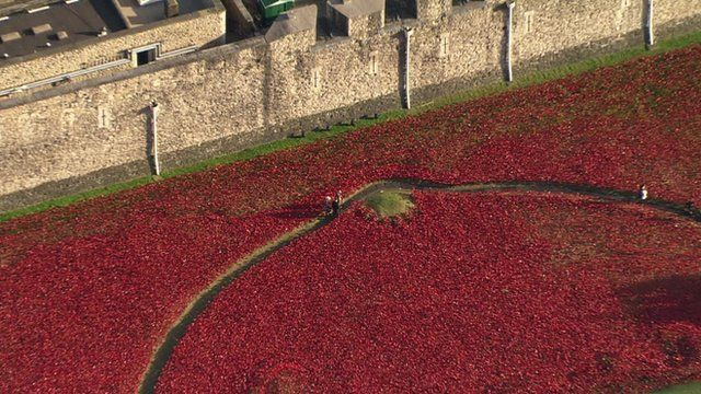 Millions of people have come to see the ceramic poppies before they are dismantled